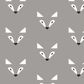 shadow fox in grey