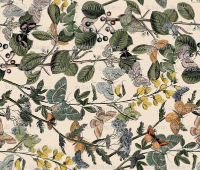 Autumn In The Butterflies' Garden ~ Rotated