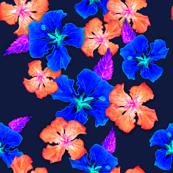 hibiscus on navy blue 1