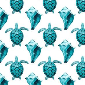 Sea Turtle & Conch Shells in Aqua Tones on White