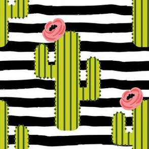 """6"""" Fiesta Cactus - Black & White Stripes"""