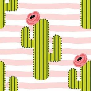 "6"" Fiesta Cactus - Pink Stripes"