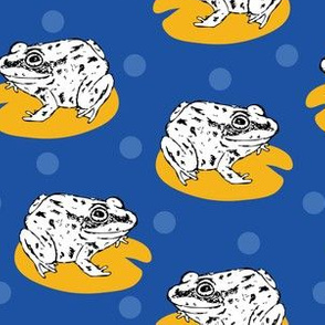 Sketchy frogs
