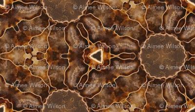 Ammonite Remix