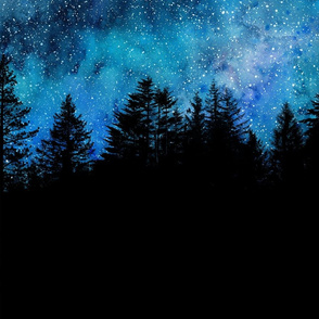 Star night sky over the forest