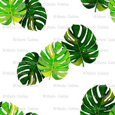 Watercolor Monstera leaves 1