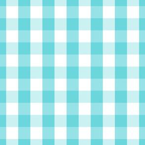 Pale Aqua Blue Gingham Check Pattern