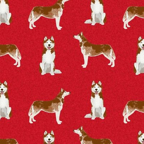 husky red coat coordinate pet quilt a dog fabric quilts