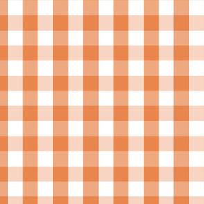 Nasturtium Orange Gingham Check Plaid