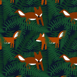 Foxes and Ferns