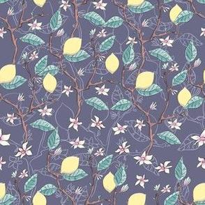 lemon_pattern_v1
