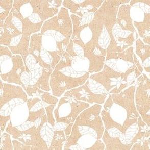 lemon_pattern1