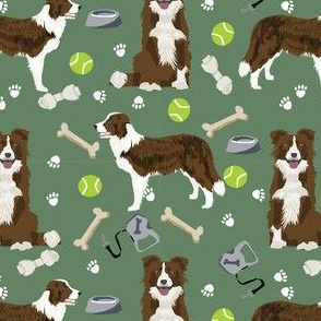 border collie choc and white toys tennis balls neutral medium green fabric