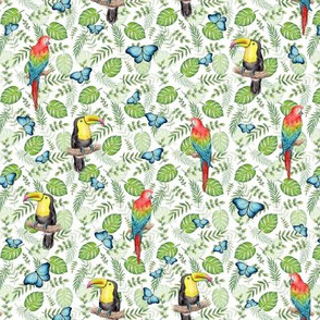 Tropical Toucan, Macaw and Butterflies on white - small