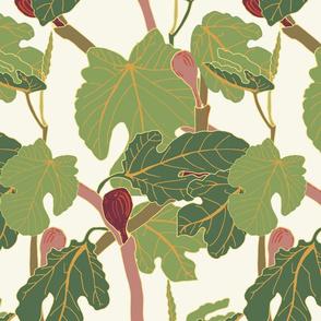 June Fig