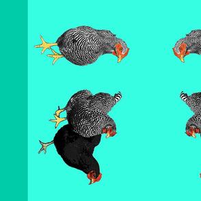 three chickens dishtowel