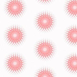 SUN III