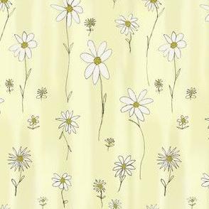 Daisy Daisy ..........