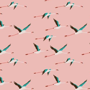FLAMINGO COASTAL SMALL