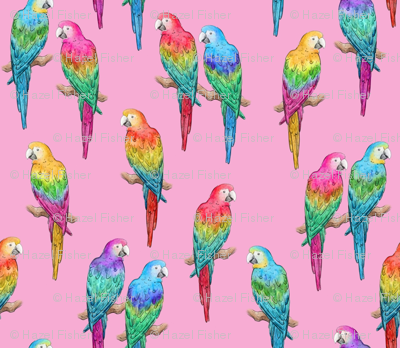 Rainbow Macaws on pink