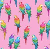 Rainbow-macaws-pink-150-6p5-inch-block-hazel-fisher-creations_shop_thumb