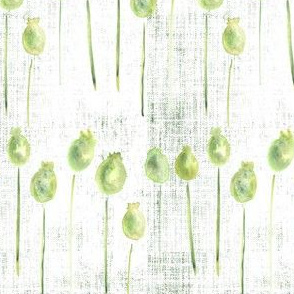 Watercolor Small Poppy Pods  Distress Sage Forrest Green White Leaf Leaves Texture  _ Miss Chiff Designs