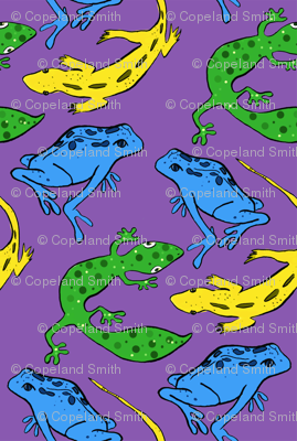 Geckos and Lizards and Frogs oh my!