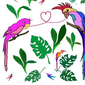 The parrots in love