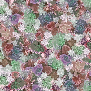 succulents fabric peach