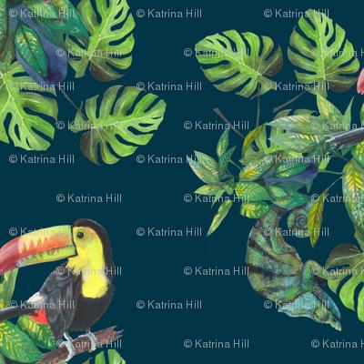 Toucans & chameleons