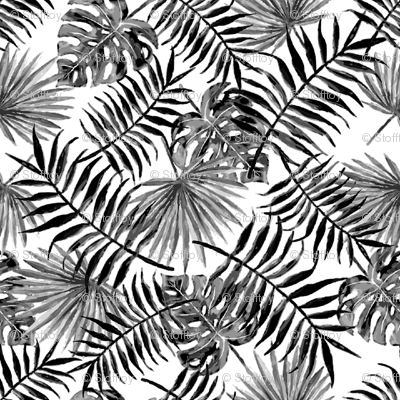 monstera and palm leaves - b/w