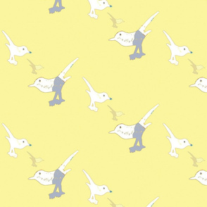 Playful birds 4