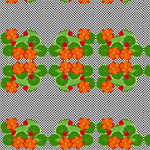 Nasturtiums and Dots