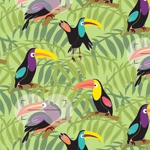 Toucan Spotting