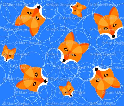 Fox Circles