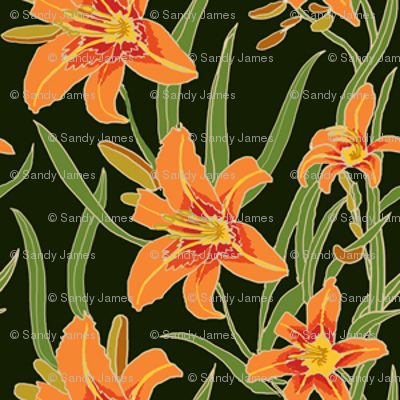 day lily on black 2x2