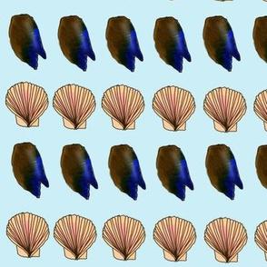 Seashell Paradise