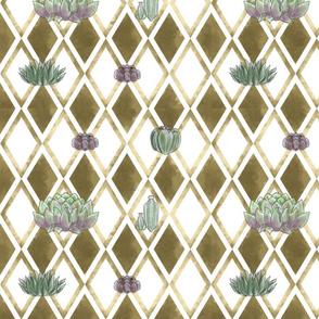 Diamond Succulents - White
