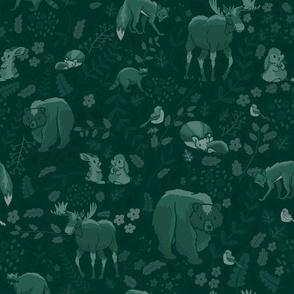 Emerald Forest - Dim