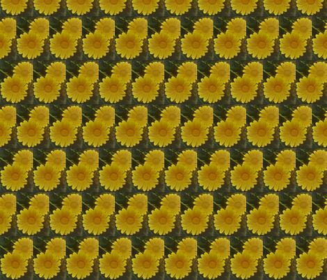 IMG_20180503_102109 (2) fabric by lisalightart on Spoonflower - custom fabric