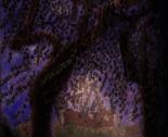 Rrauroras_forest_burlesque_thumb