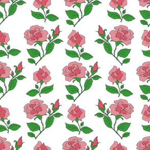 pink roses on white