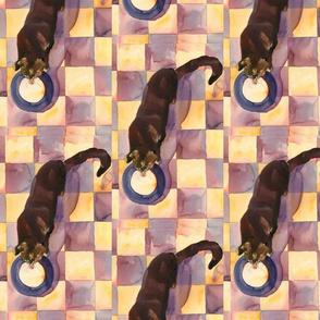 Kitty drinking milk_ pattern