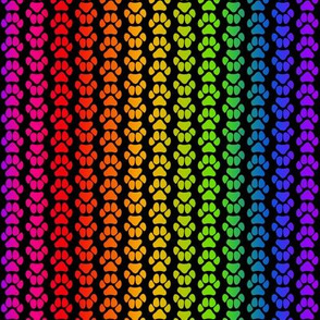 Rainbow Pawprint Small