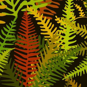 Fern Forest in Rustica
