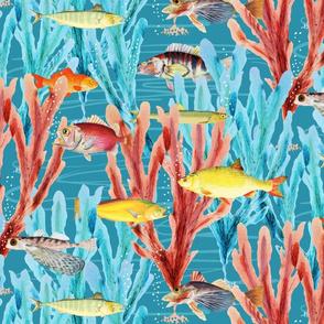 tropicalfishandkelp