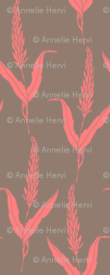 Coral Reed
