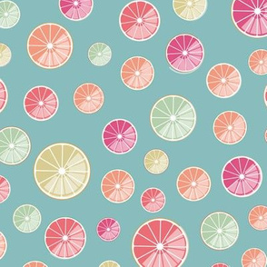 colourful citrus slices on blue