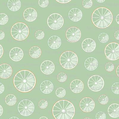 citrus slices on green