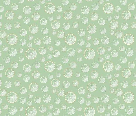 R07_citrus_green_shop_preview